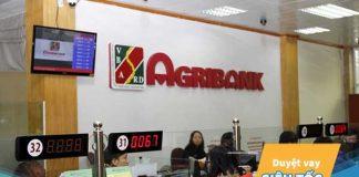 Vay du học ngân hàng Agribank: Lãi suất, điều kiện, thủ tục?