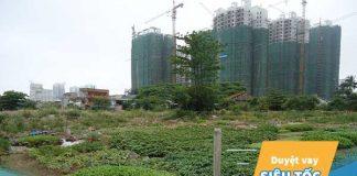 Đất nông nghiệp là gì? Có chuyển đổi thành đất ở được không?